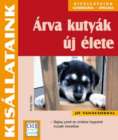 Árva kutyák új élete